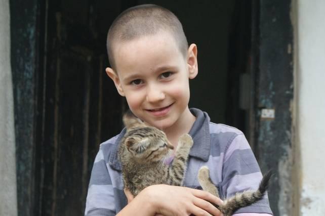 Kisfiú egy kiscicát tart a kezében
